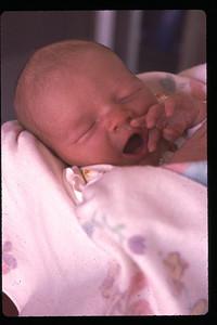 baby joey 5