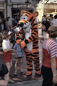 Joe is being hugged by Tigger at Disneyland.