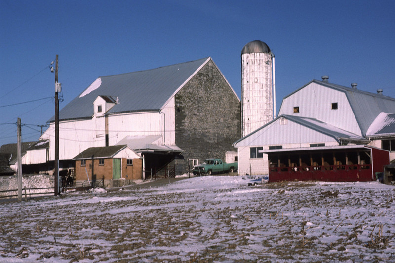 Spring visit to a Mennonite farm