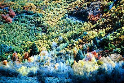 1991-08 Provo Canyon Fall Colors