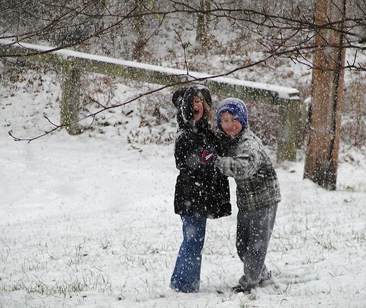 03011601L_January_Snow