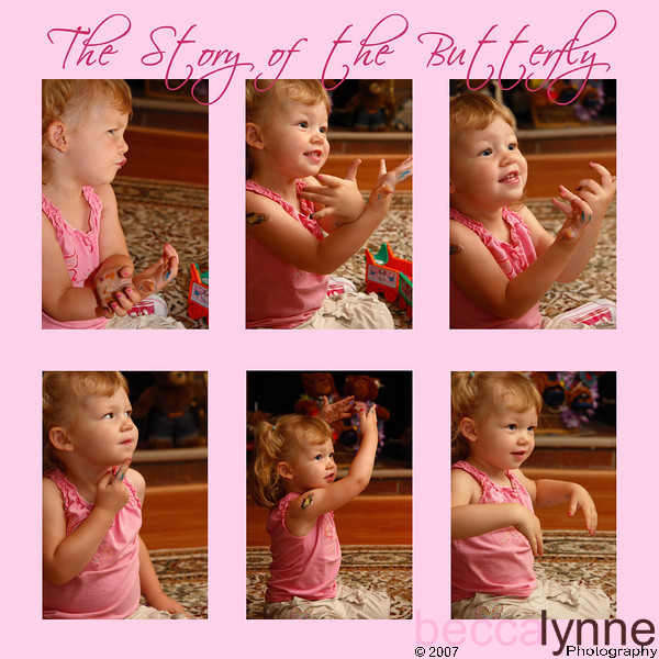 The Story of the Butterfly, by Amelia<br /> <br /> Last weekend we went to Forest Falls, California and Amelia encountered her first real life butterfly.  I wish I was running video instead of stills, but I was able to capture the moment.  She is verbally telling this story as well as using sign language.  Here is the synopsis:<br /> <br /> The first photo in this series shows how concerned she was about the butterfly.  She was actually very frightened by it.  I think she thought that is might sting her like a bee.  She even said that the butterfly was no bee and that it was safe.<br /> <br /> The second & third photos here are her telling us that when daddy told her that the butterfly was okay she was able to watch it fly and see how pretty it was.  I love the wonderment in her eyes in the second photo.<br /> <br /> The fourth photo is her contemplating and thinking about what happened next.<br /> <br /> The fifth photo is telling us that the butterfly flew away.<br /> <br /> The final photo is her telling us that she then went to throw rocks into the creek.