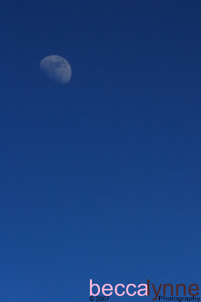 The Moon from Above<br /> <br /> This photo was taken from the airplane window.  The moon was in the sky around 2:30 PM.