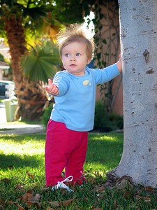 12/15 - Lili is 9 months old, she can stand up and walk by any vertical surface