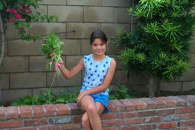 Allison wradishes