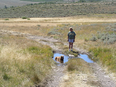 Hart Mountain back road hike