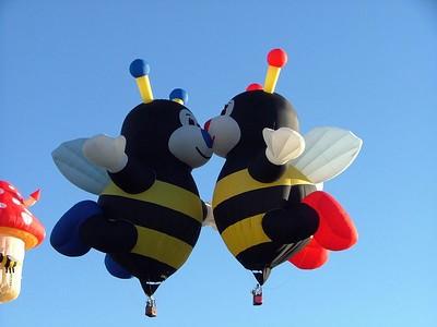 2004 10 Albuquerque Balloon Fiesta