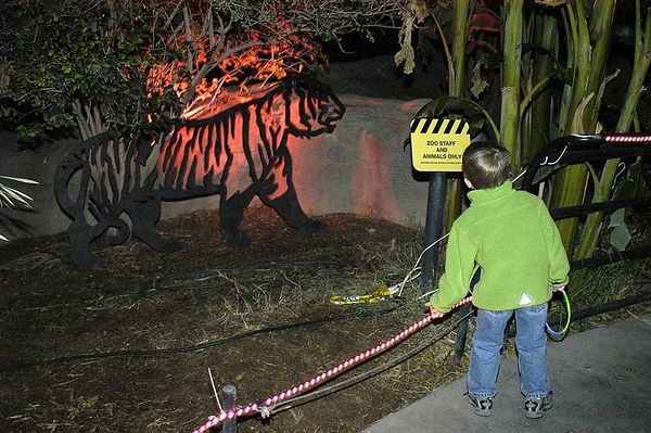20041203_XMAS_ZOO_LIGHTS_14327