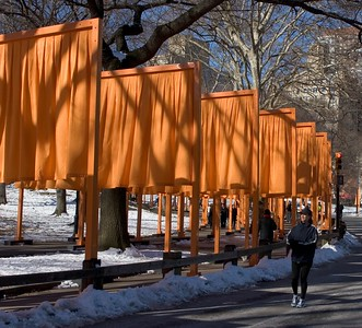 The Gates - Central Park, NYC - February 27, 2005