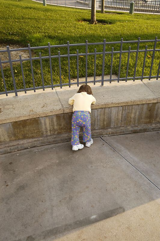 2256_Disneyland