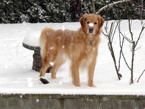 January 2007 Pics