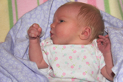 11 PM, Saturday night, April 1st 2006.    Chloe is almost 2 & 1/2 days old.