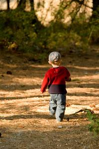 Walking away in the woods