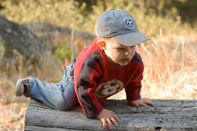 Climbing over log