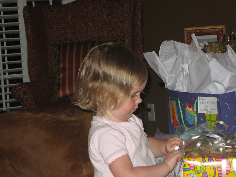 Maggie's 1st Birthday 07-01-06 (65)