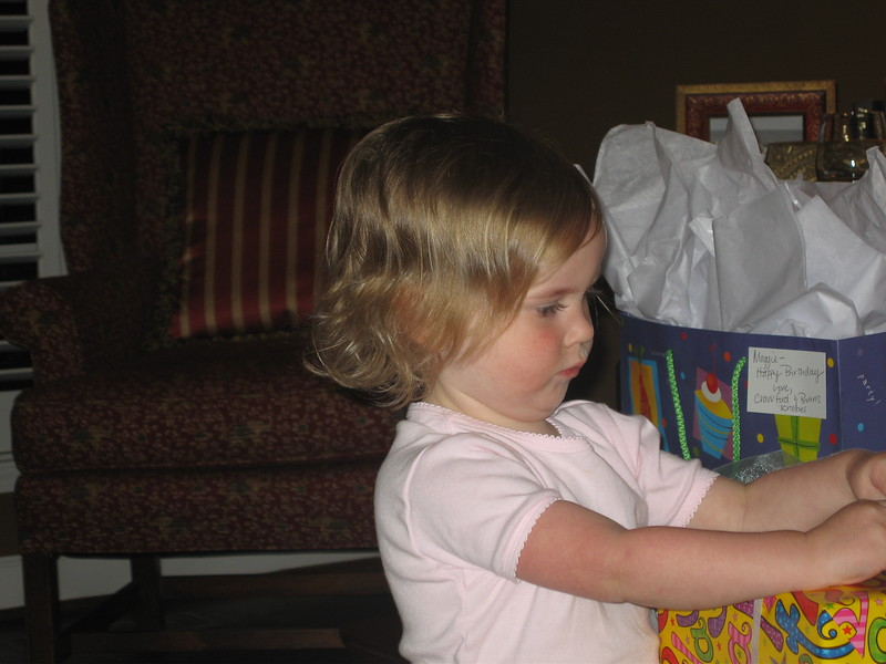 Maggie's 1st Birthday 07-01-06 (67)