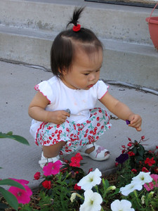 jul 17, 06 picking flowers.jpg