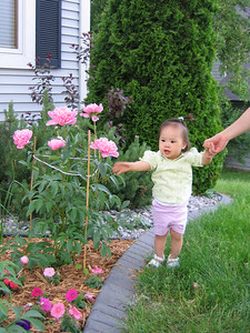 may 31, 06 playing in the peonies.jpg