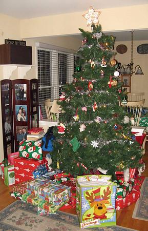 2007-12 Rodman Family Christmas
