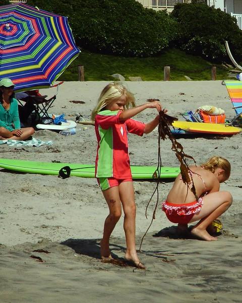 Carlsbad Beach -1