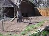 Denver Zoo Visit Sunday, March 25,2007 (22)