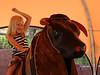 Glenwood Caverns Bull Ride -01100