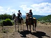 Riding at Bearcat Stables -01386