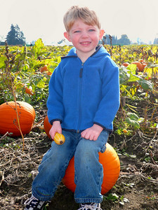 Gavin at the pumpkin patch