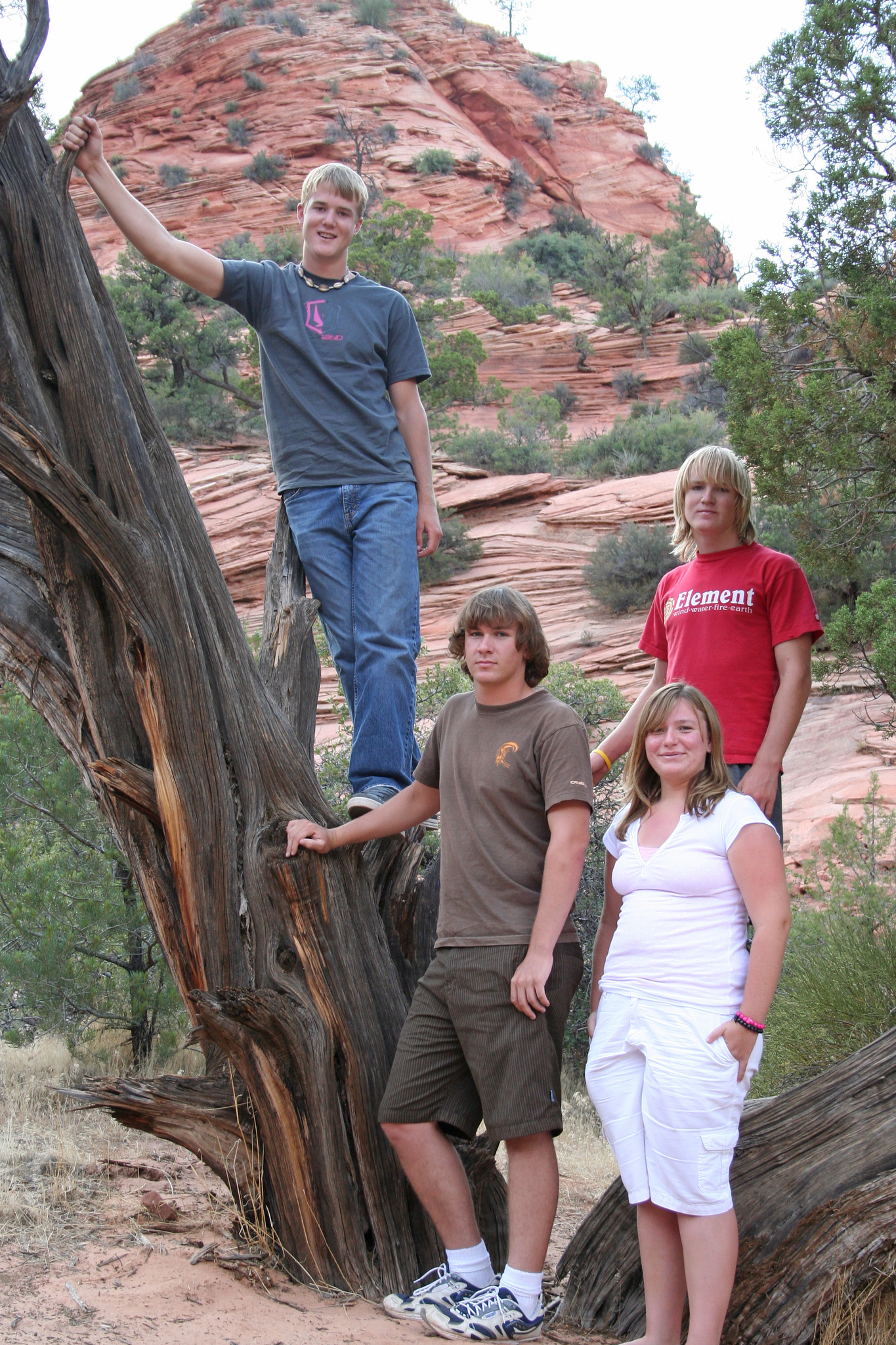 Grady Roth, Rory & Jo Ellen Johnsen, and Nathan Roth taking a break in the trip home @ Zion National Forest, Utah 7/20/07