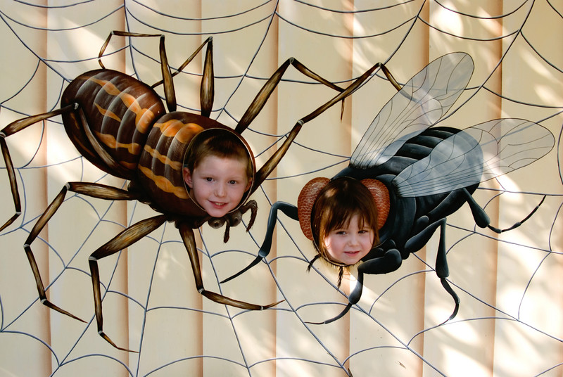 7.5.2007 -- Our little bugs...