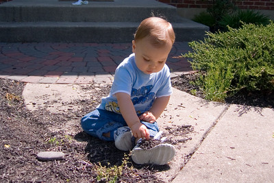 Playing in the mulch is as much fun as playing in the dirt.