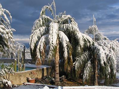 20070122 AZ Snow