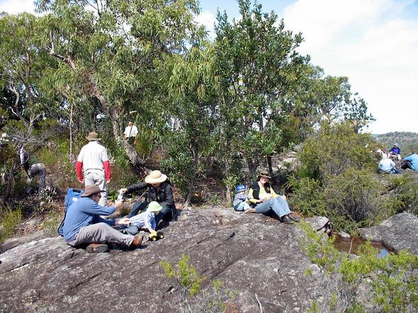 Muogamurra Reserve
