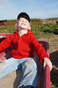Gavin - looking up Pumpkin patch