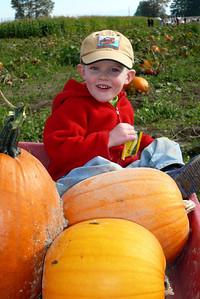 Gavin Pumpkin patch