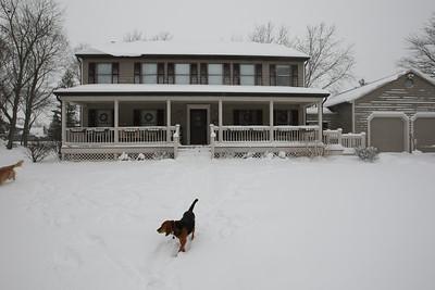 2008-03-08 blizzard
