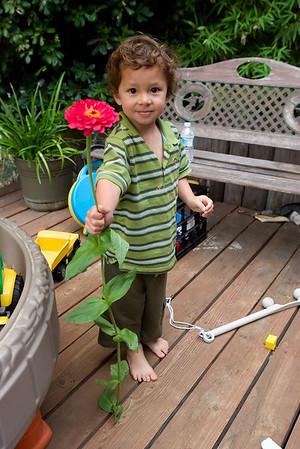 20080806_Backyard
