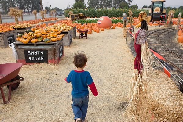 20081027 - Spina Farm