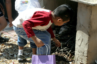 Julio Hunting Eggs