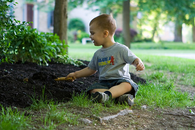 K.C. digs through the mulch looking for worms.