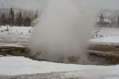 20090102-Picture 079