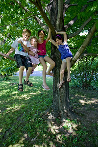 Nicholas, Beverly, Cassandra, and Alana in the tree