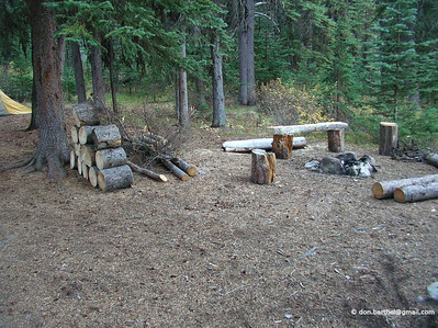 Fire ring. See all the firewood? Are they expecting celebrities?
