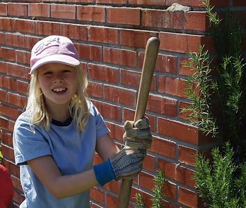 Weekend Gardening in March 2009