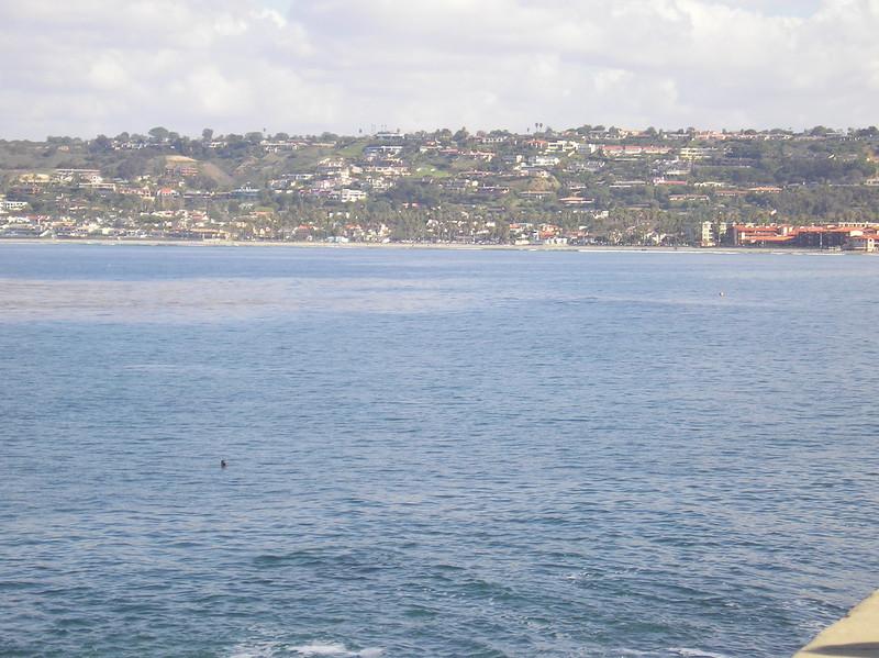 San Diego 2009 005