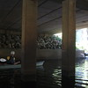 Virginia Blackwater River canoe trip with DCR