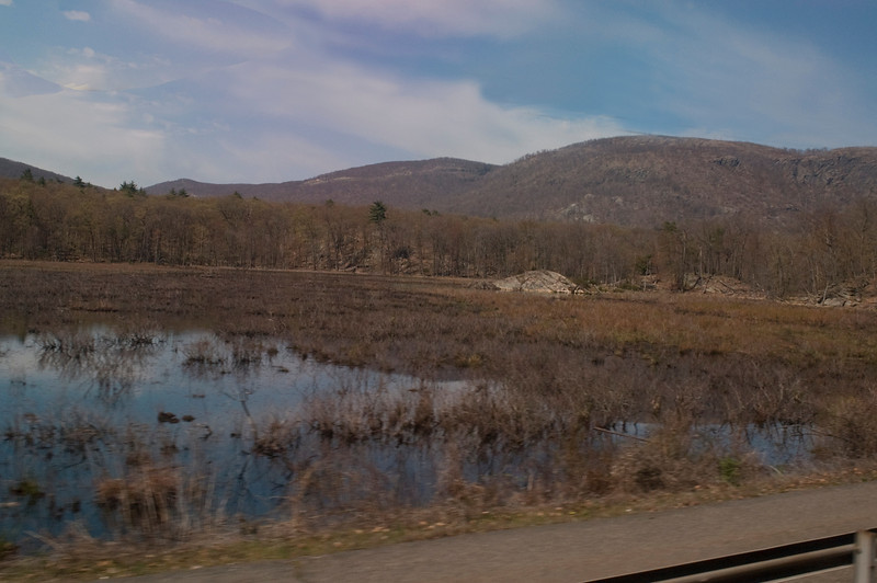 Constitution Marsh - photographed from train