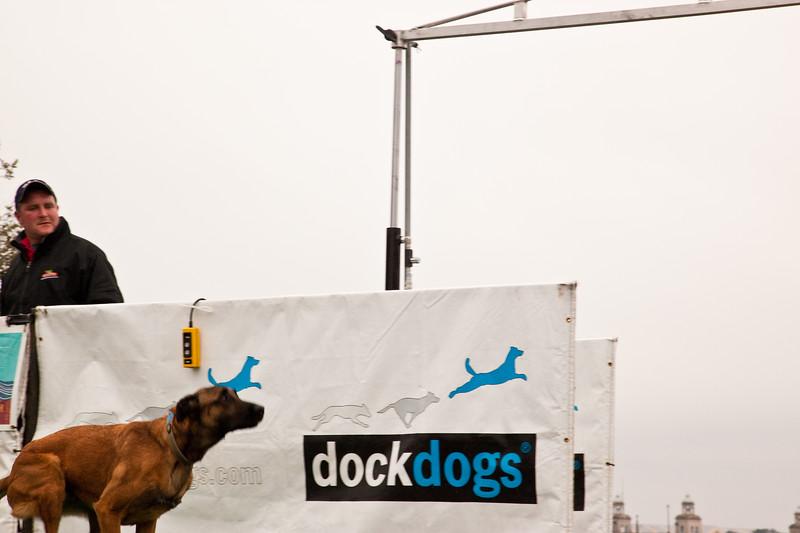 Dockdogs,Popcorn,Earrings-7