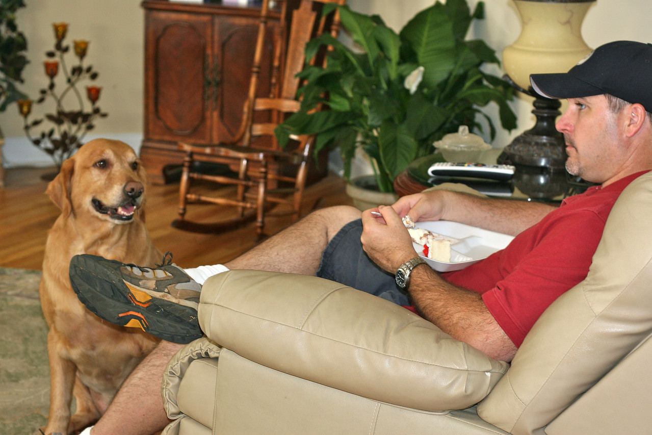 That dog really wants Jeff's ice cream!