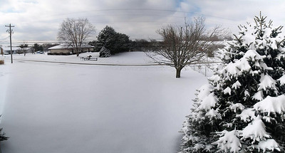 Panoramic view of our front yard.